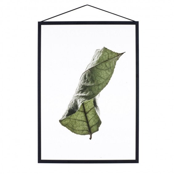 MOEBE Floating Leaves Poster A3