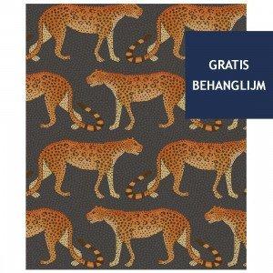 Leopard Walk Behang