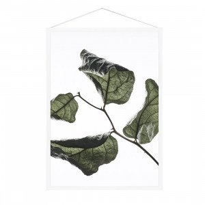 Floating Leaves Poster A4