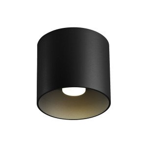 Wever & Ducré Ray 1.0 LED Plafondlamp